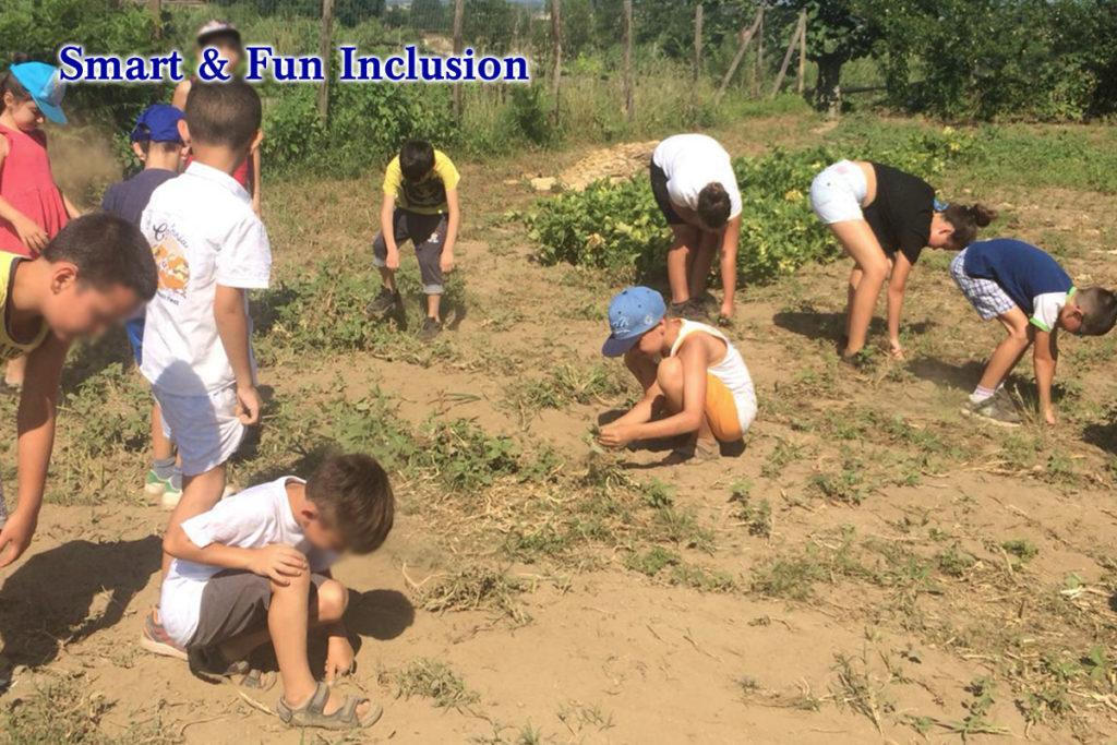 Smart & Fun Inclusion